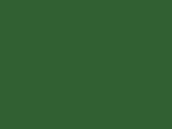 Verde | Acabado metal